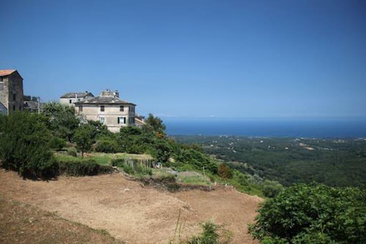 Rent charming studio in Corsica - Sant'Andréa-di-Cotone