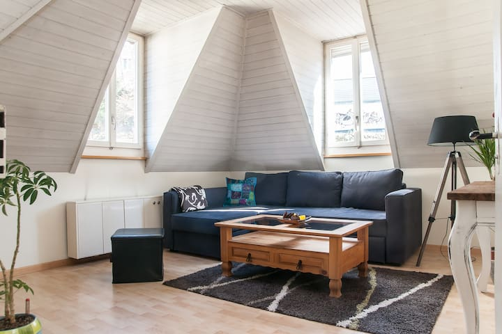 Cozy and charming roof-top apt - Saint Gallen - Huoneisto