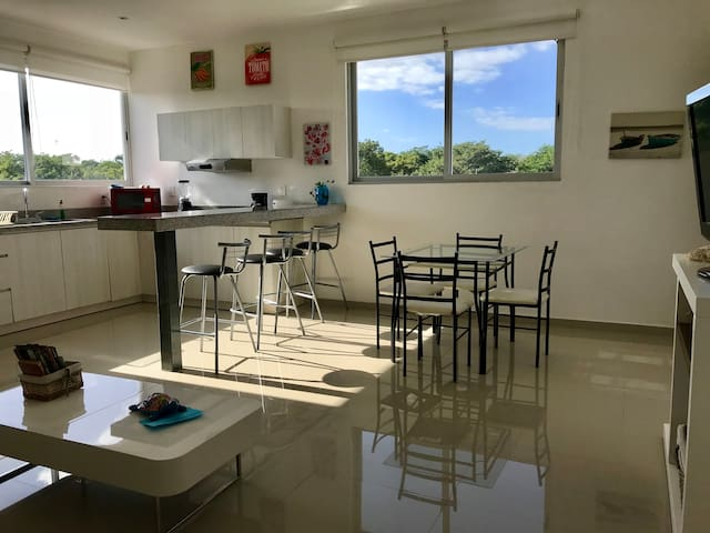 Nice apartment few minutes from Xcaret