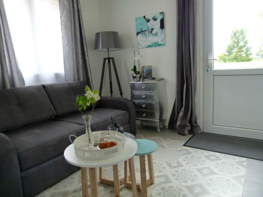 salon avec canapé convertible , accès indépendant