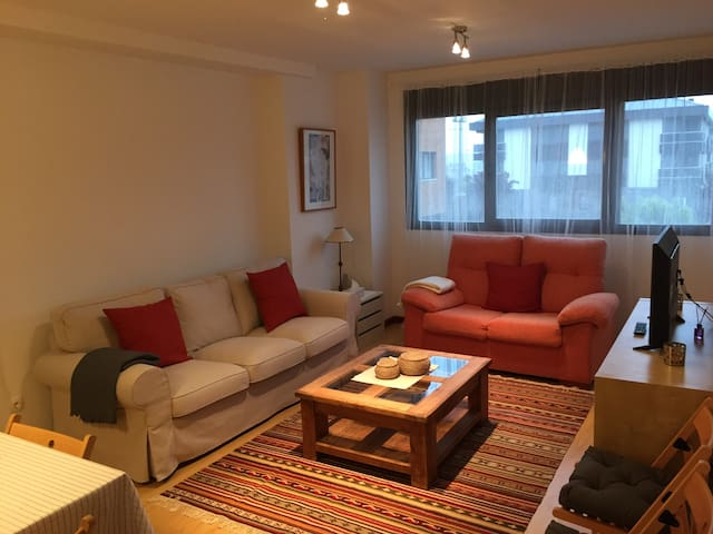 Charming bright apartment in Haro