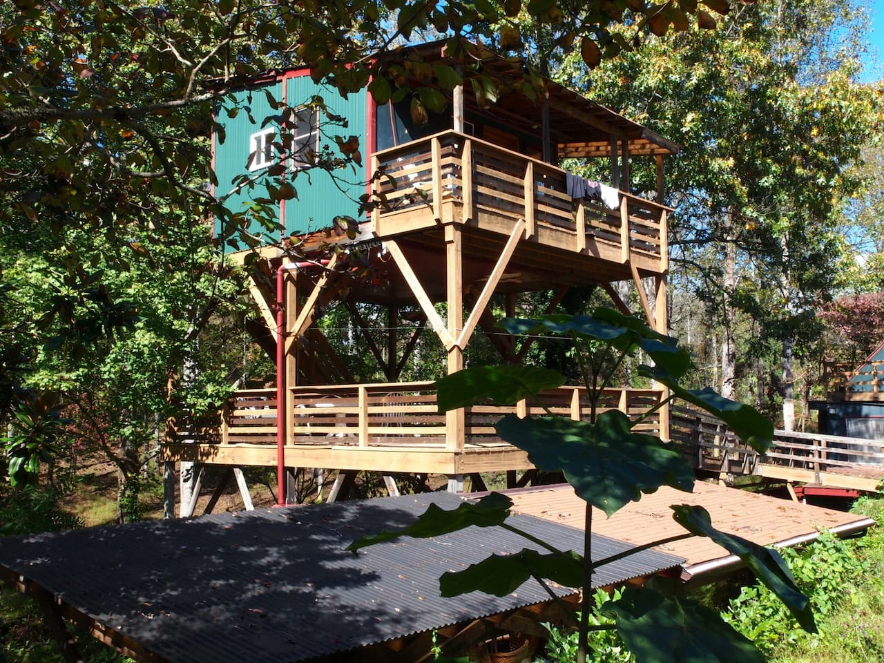 tree house u0026 sky walk at white lotus treehouses for rent in