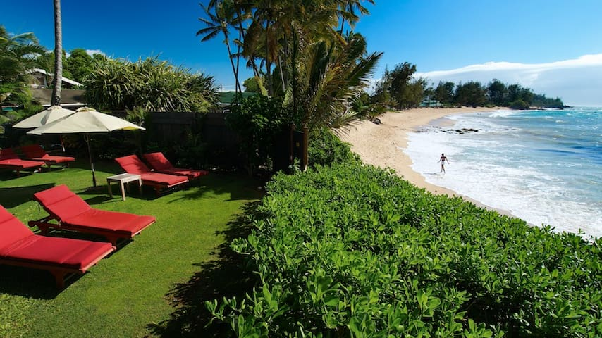 3 Bed Beach Front! STPH(PHONE NUMBER HIDDEN) - Paia - House