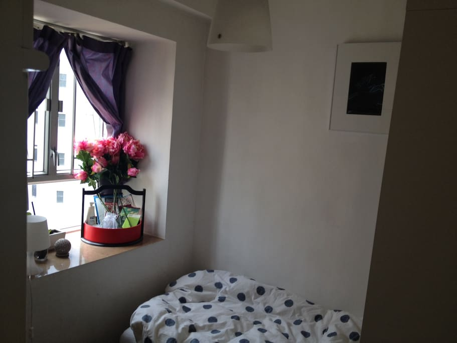 Room has a wide view of Sheung Wan due to a public sitting-out space next to the park, which allows for lots of natural light.
