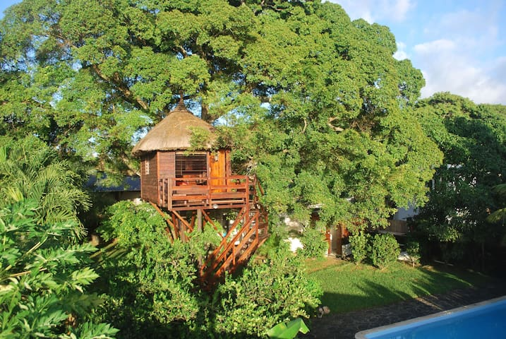 La Cabane dans l'Arbre. Tree Lodge - Belle Mare - Bed & Breakfast