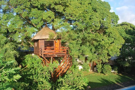 La Cabane dans l'Arbre. Tree Lodge  - Bed & Breakfast