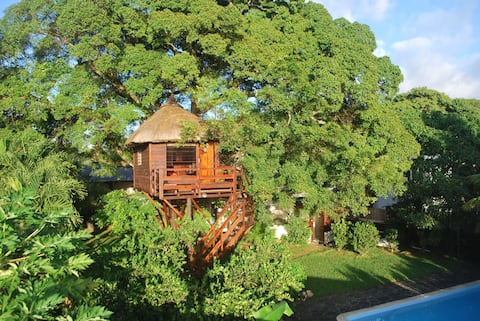 La Cabane dans l'Arbre. Tree Lodge