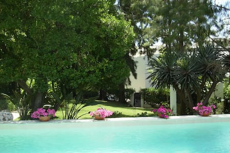 Holiday house in Balaia - Algarve - อัลบูเฟรา - บ้าน