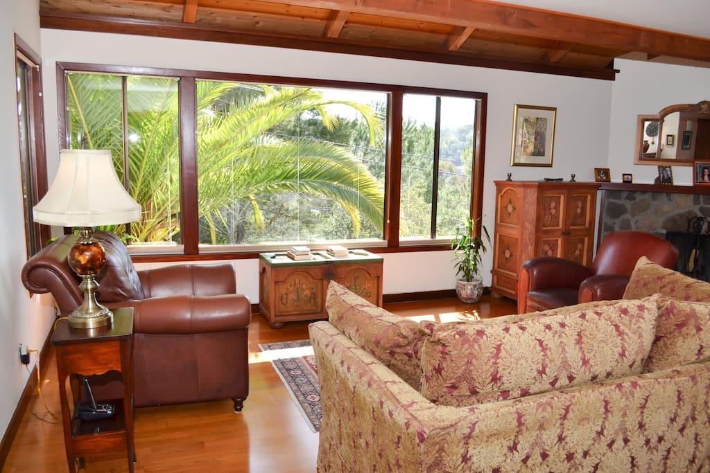 Sunny Living Room Facing Mount. Tamalpais