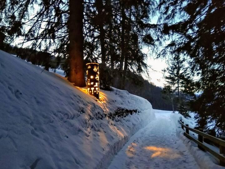 Sonne&Schnee! 3,5 Zimmerwohnung 4-5 P. + Kleinkind