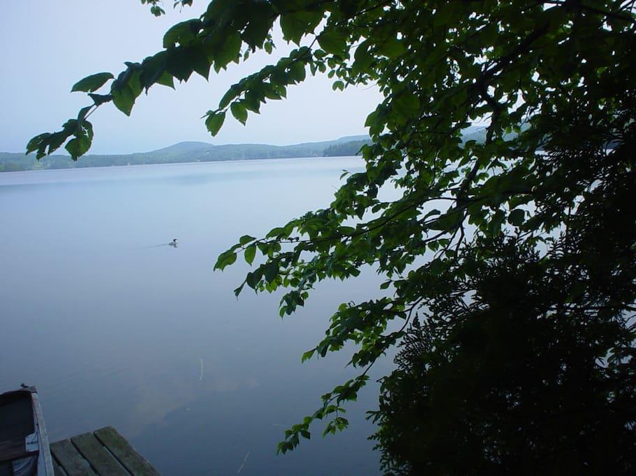 Private dock on pristine Caspian Lake