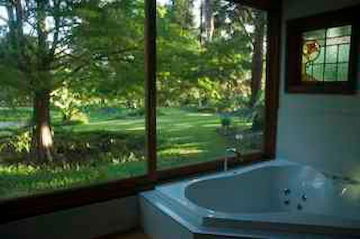 Enchanted Woods Spa Cottage - Main Arm - Cottage