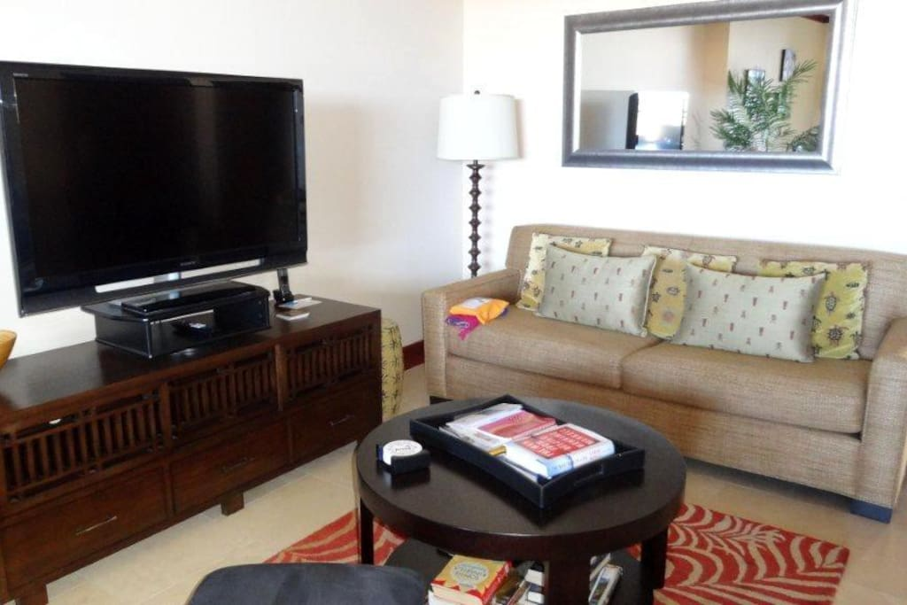 Living Area with flat screen Tv and DVD player