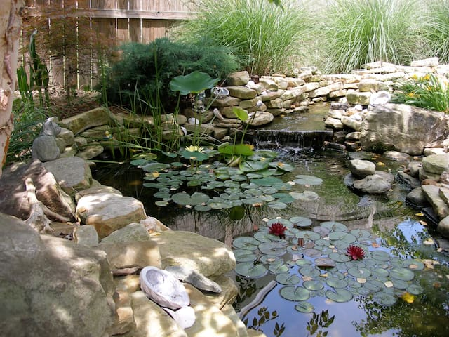 Sit outside next to the Koi pond and enjoy the calming sound of waterfalls and the shaded patio. Watch the fish, birds and dragon flies.