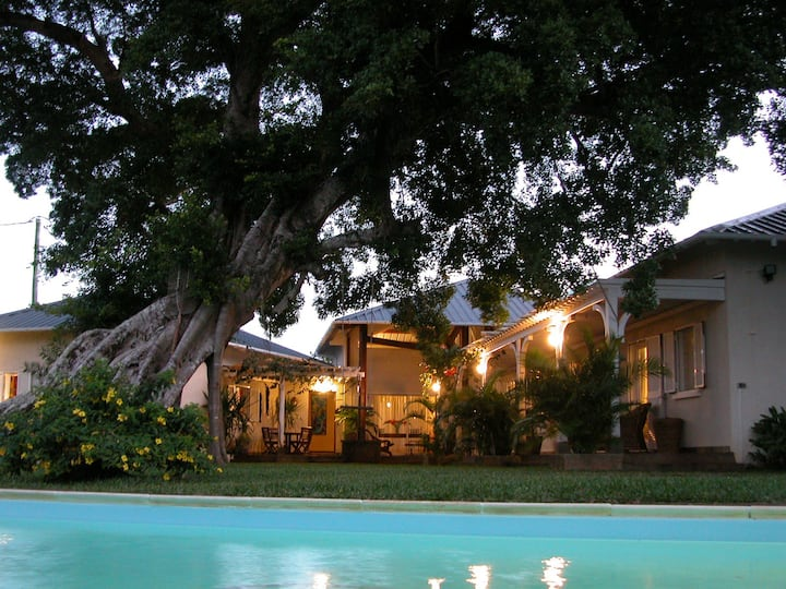 Tree Lodge - Bed & Breakfast