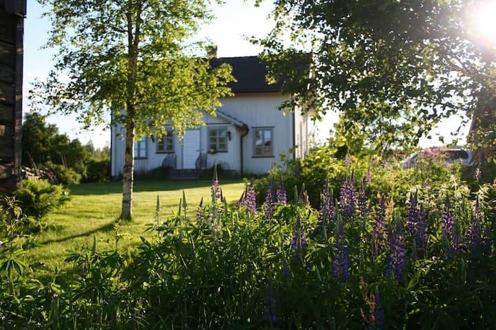 Søstun Gård - din egen bondegård