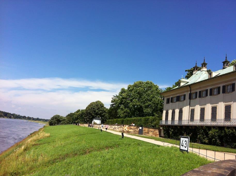 Schloß Pillnitz - ein Spaziergang lohnt sich bei jeder Jahreszeit, a walk around the castle's worth seeing.