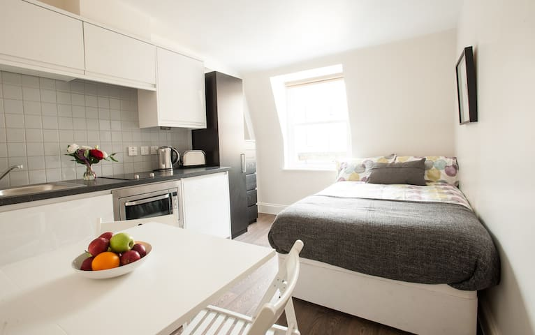 Brand new studio in Victoria (15) - London - Apartment