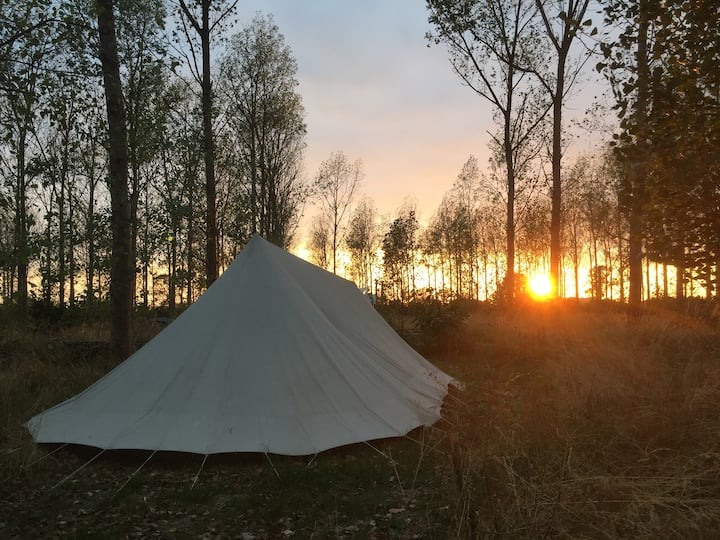 Tipi tent in voedselbos