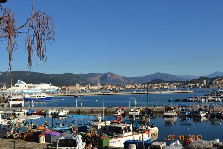 le vieux port Tino Rossi à 5 minutes à pied
