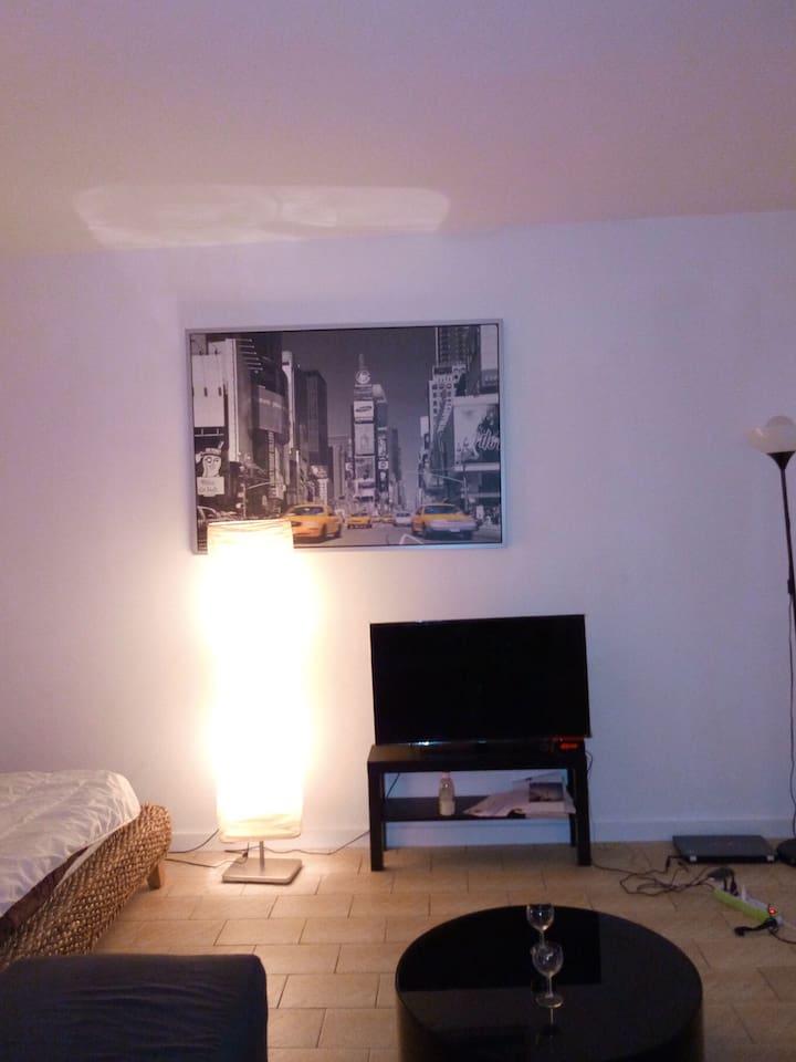 Superbe appartement très lumineux avec un canapé et un lit 2 places très confortable. Il est situé à proximité de tous commerces et 3 min à la gare.