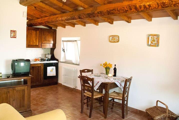 Girasole Il Poggio delle Ginestre  Perugia Assisi - Torgiano - Apartamento