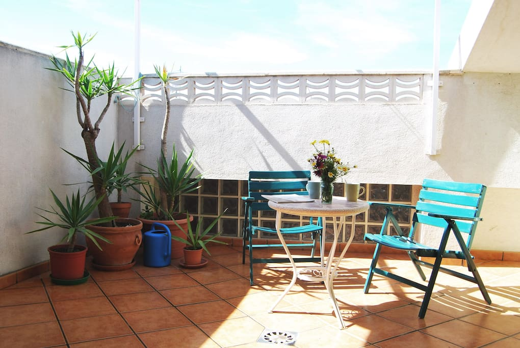 Sunny terrace with plants  - Terraza soleada con plantas