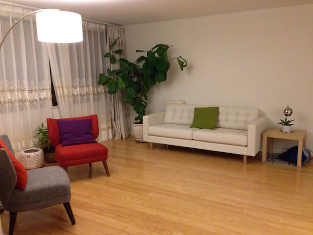 Private Room + Bathroom in Chestnut Hill MA - Newton - Condominio