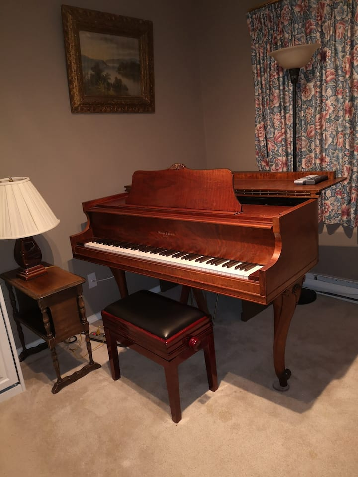 Musical Air BNB not until after covid 19
