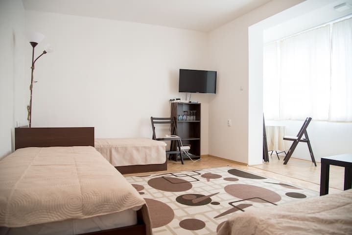 Druzhba Airport Apartment