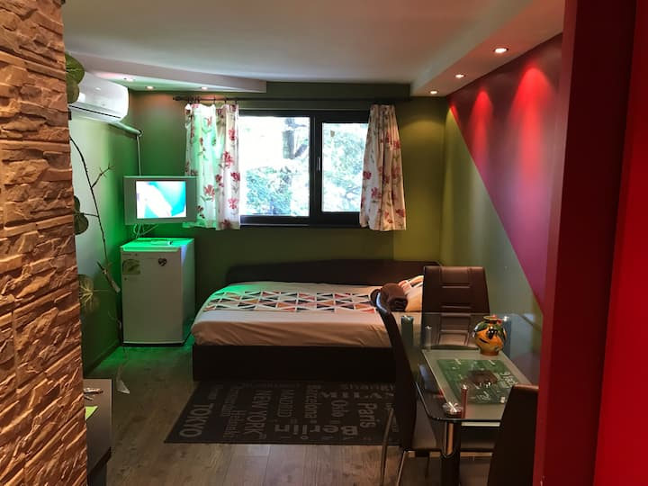 Best Guest Studio-R