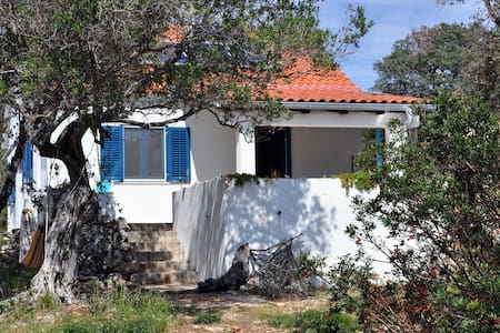 Very special, charming House/Silba - Zadar - House