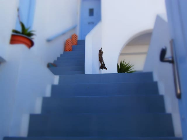 Elkaza Junior Villa in Fira - ฟิรา - อพาร์ทเมนท์