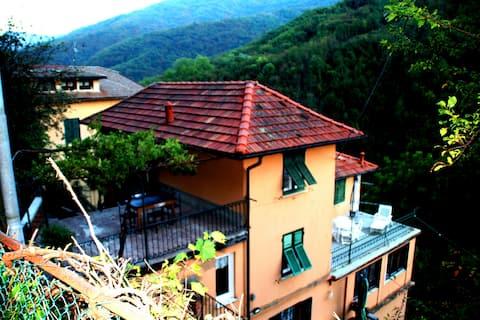 FONTANA'S HOUSE RELAX               010065-LT-0001