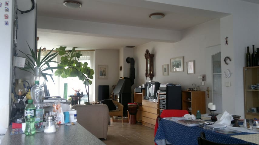1 room (2 beds),Bathroom+Toilet=quiet part of Prag - Prag - Hus