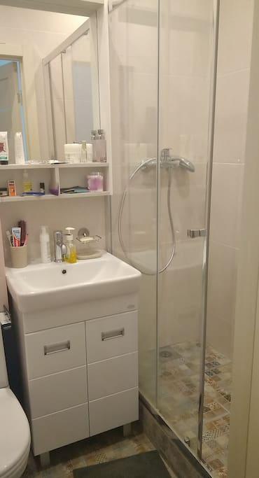 Bathroom (ванная комната с душевой кабиной)