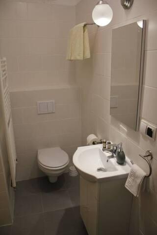 Bonfert Comfort Apartment - Cisnadie Center