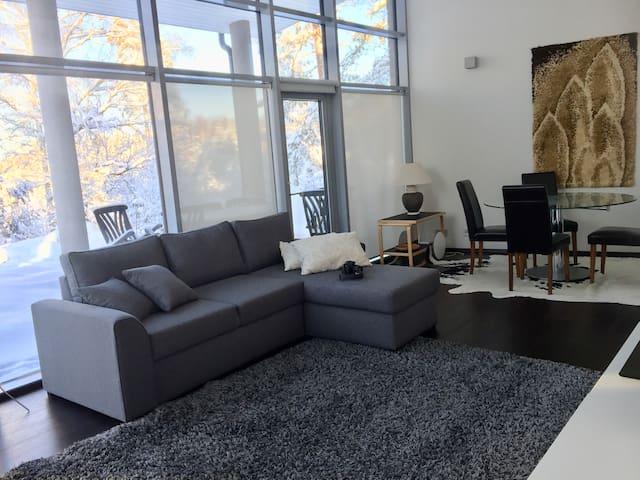Moderni talo rauhallisessa ympäristössä