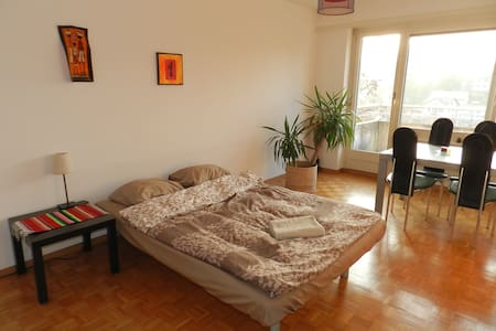 Bright room in an eco-friendly flat - Lancy - Apartmen