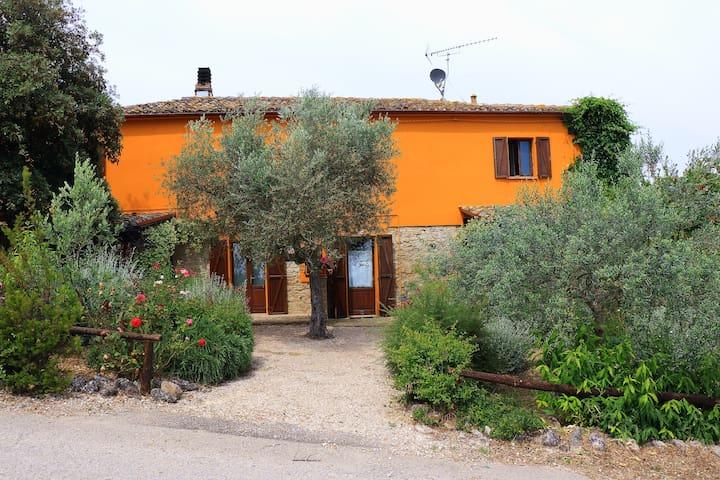 Casa Fonte Pecorale - Il Nido - Montefino - Apartment