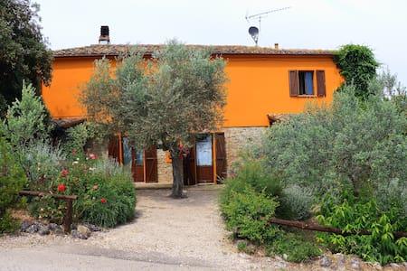 Casa Fonte Pecorale - Il Nido - Montefino