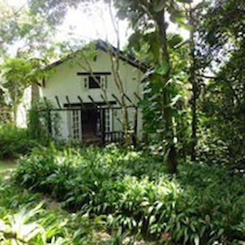 Jarabacoa Paradise Eco Lodge Villa #2! - Jarabacoa - Hus