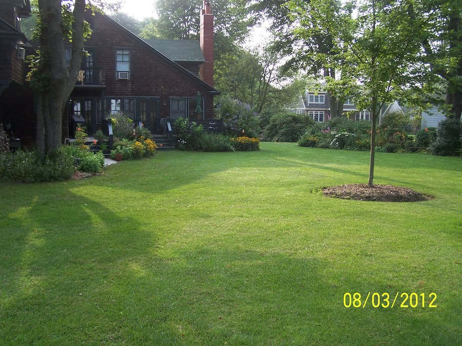 Spacious back yard with gardens on very quiet street.