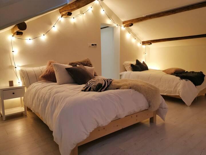 揽月 星空房 躺在床上数星星看投影 视野好无遮挡 朝南 迪士尼接送 行李寄送 中央空调地暖 双床房