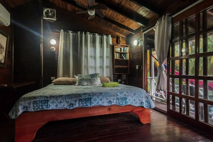 Private bedroom in ecofriendly house with a pool and many amenities!