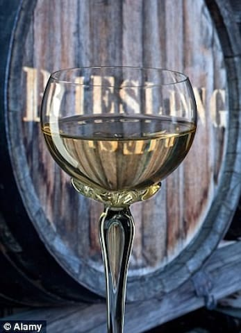 What the Moselle is Famous For ... Wine Tastings can be Arranged  Please Ask !