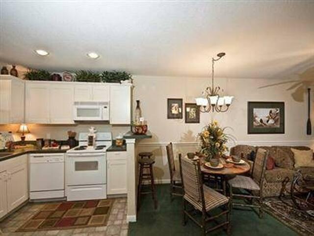 Apartment at Lake Conroe near Houston - Conroe - Apartament