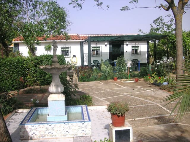 Airport nearby - Carmona - House