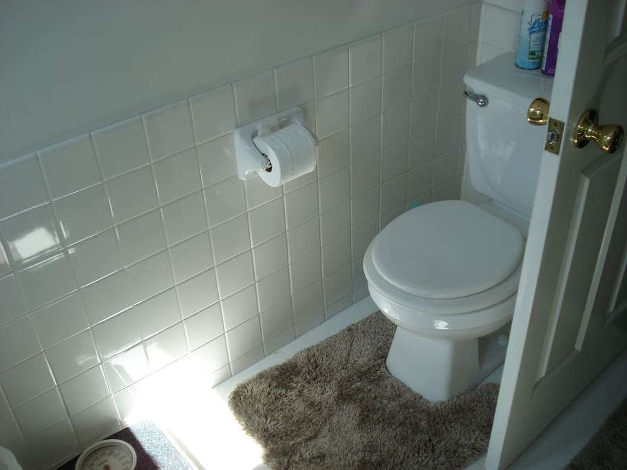 Toilet and hand installed white tile