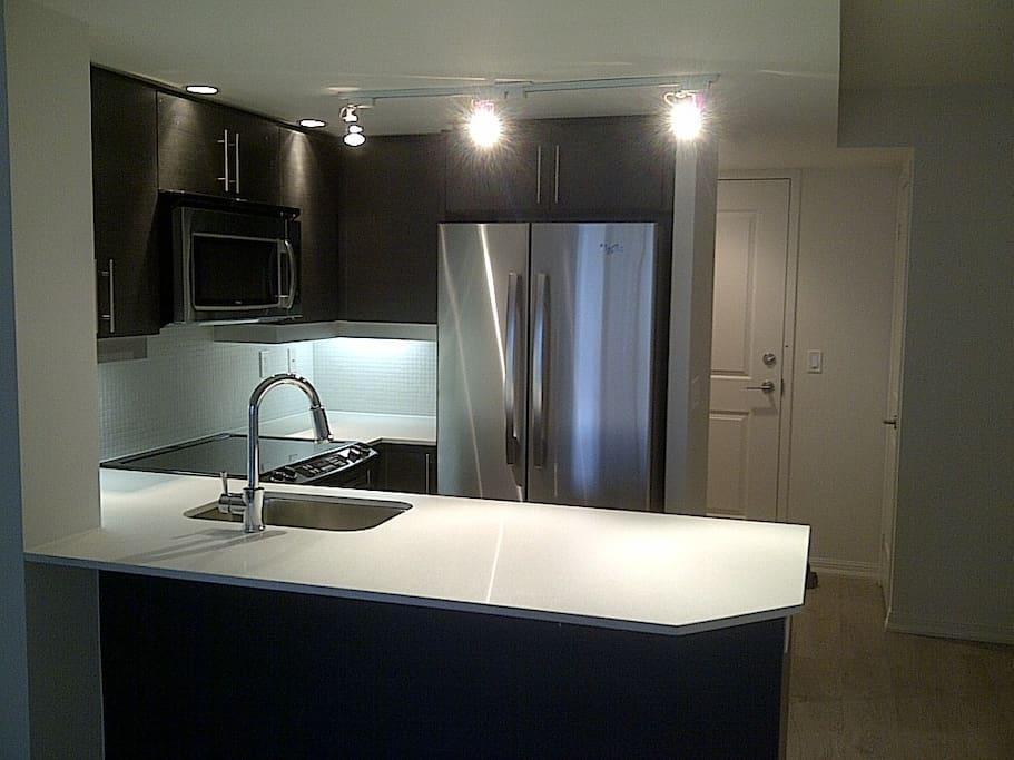 Modern 1 Bedroom Condo Park Views Apartments For Rent In Toronto Ontario Canada